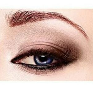 Brand New Icon by Absolute New York Eyeshadow Pall